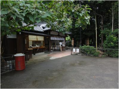 桜井240814_18