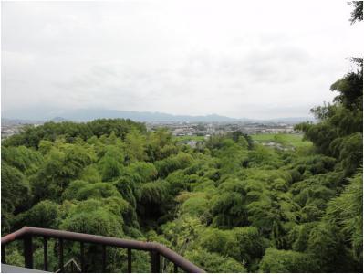 桜井240814_19