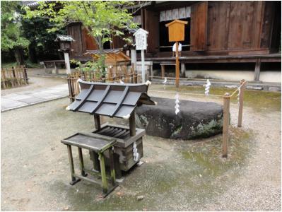 桜井240814_22
