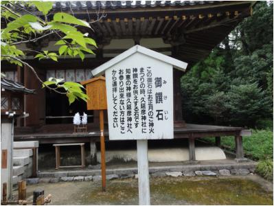 桜井240814_23