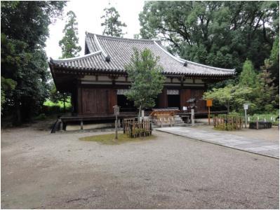桜井240814_25