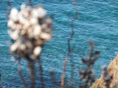 カムイの海