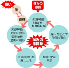 seven_image01.jpg
