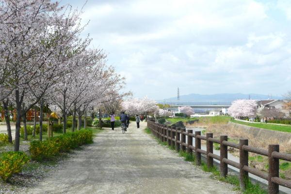 walking04.jpg