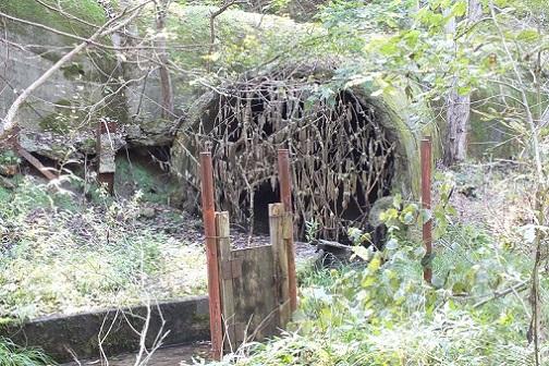 布引炭鉱 坑道