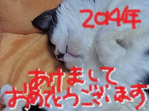 RIMG0002_convert_20140101120516.jpg
