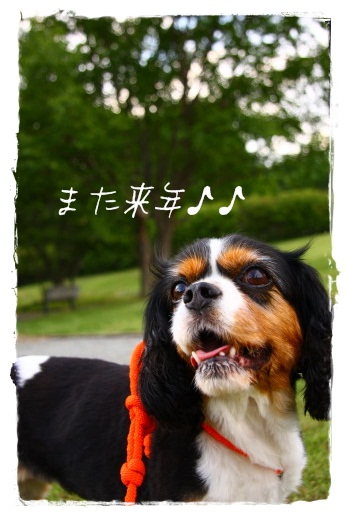 IMG_5166-1.jpg