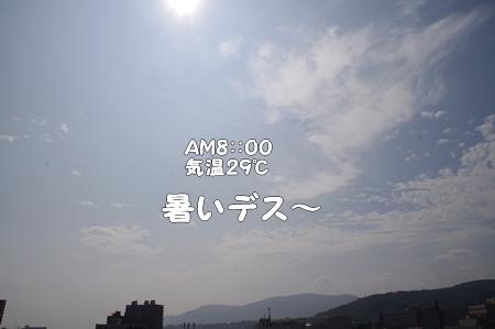 IMGP9813あ