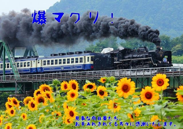 s-201208101.jpg