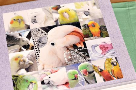 365days 鳥どりカレンダー2013