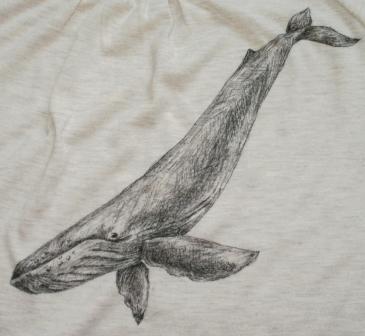 潜るクジラ