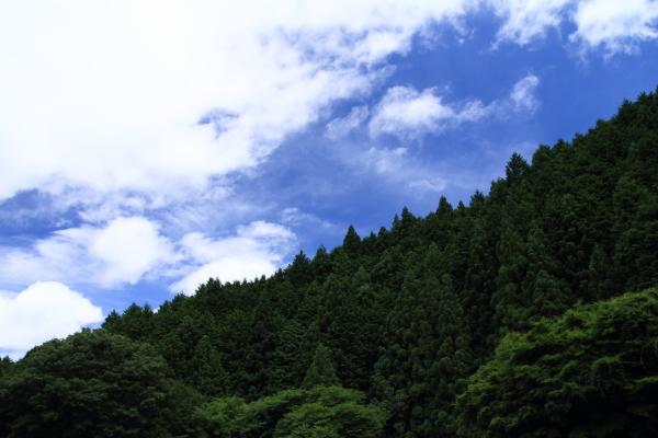 2012_0716_1.jpg