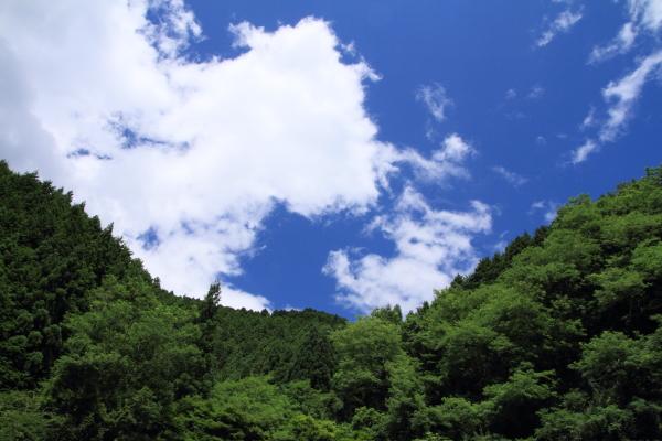 2012_0716_34.jpg