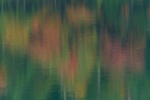 2012_1006_1_60.jpg