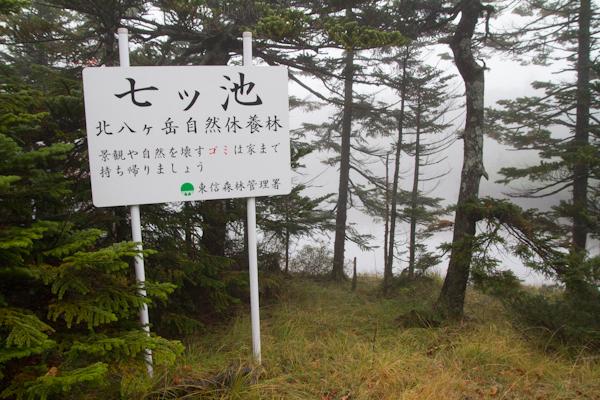 2012_1006_2_4.jpg