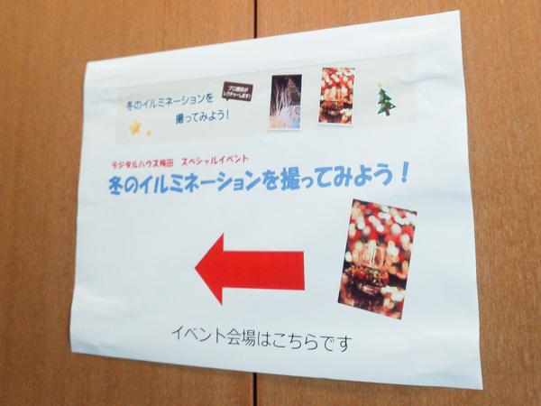 2012_1215_5.jpg