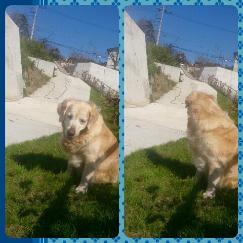 PicsArt_1381793384193.jpg