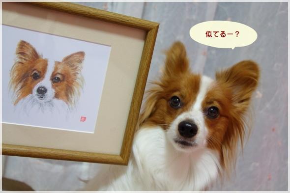 3_20121222130325.jpg