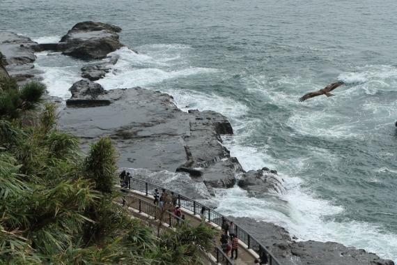 江の島2-S