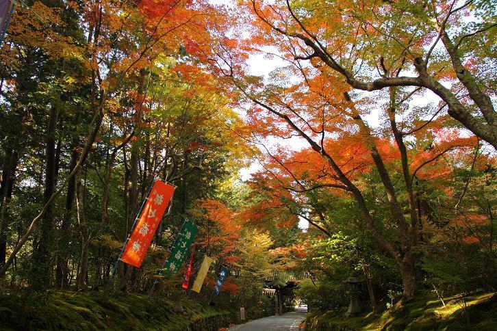 2012.11.12・『 赤山禅院 』京都 01