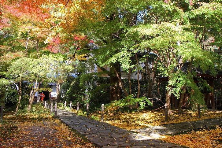 2012.11.12・『 蓮華寺 』京都 08