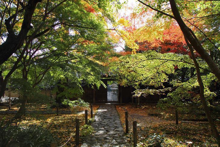 2012.11.12・『 蓮華寺 』京都 07