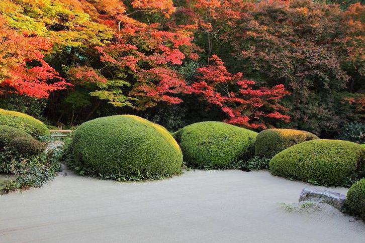 2012.11.12・『 詩仙堂 』京都 10