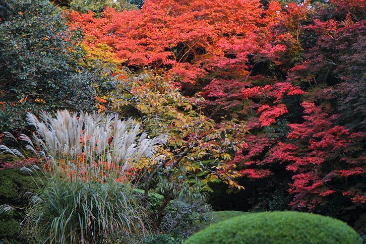 2012.11.12・『 詩仙堂 』京都 04