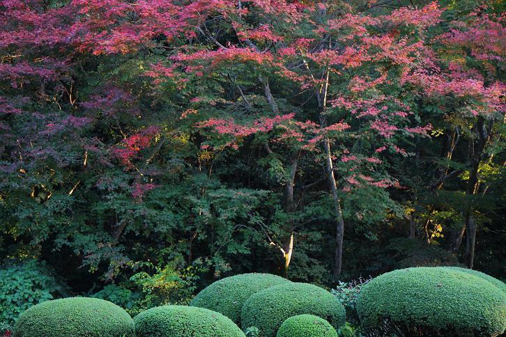 2012.11.12・『 詩仙堂 』京都 01