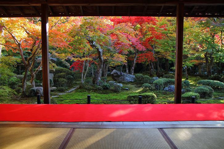 2012.11.12・『 圓光寺 』京都 09