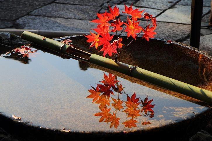 2012.11.12・『 圓光寺 』京都 04