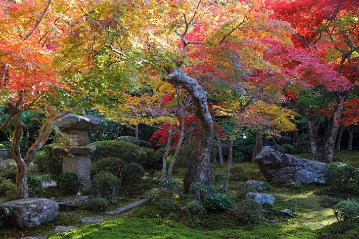 2012.11.12・『 圓光寺 』京都 03