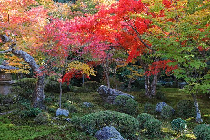 2012.11.12・『 圓光寺 』京都 02