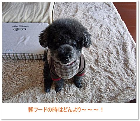 RIMG8415.jpg