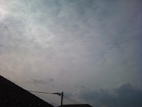 20140126pic.jpg