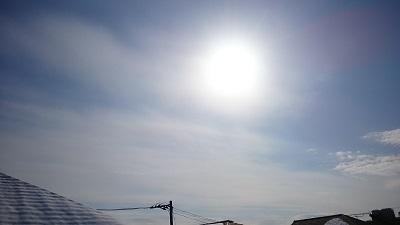 20140209pic.jpg