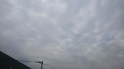 20140213pic.jpg