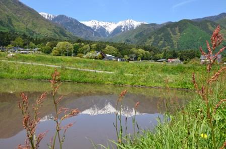 駒ヶ岳眺望_20120513_125