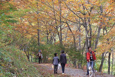 2012 10 20_2012 10 20 観音沼&日暮の滝_7923