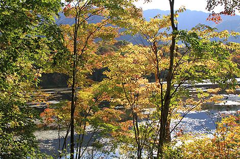 2012 10 20_2012 10 20 観音沼&日暮の滝_7855