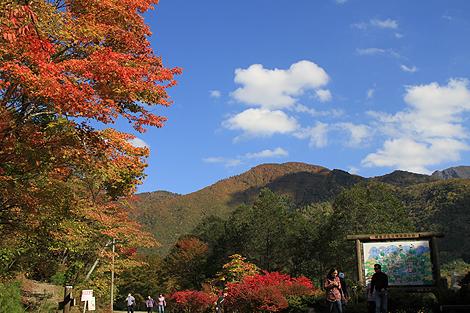 2012 10 20_2012 10 20 観音沼&日暮の滝_7798
