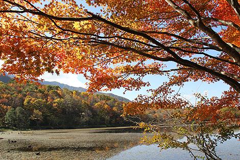 観音沼森林公園 10 25 013