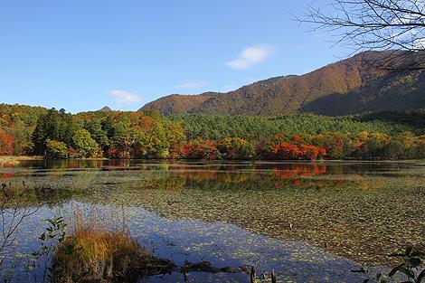 観音沼森林公園 10 25 004