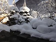 2012 12 11_1425