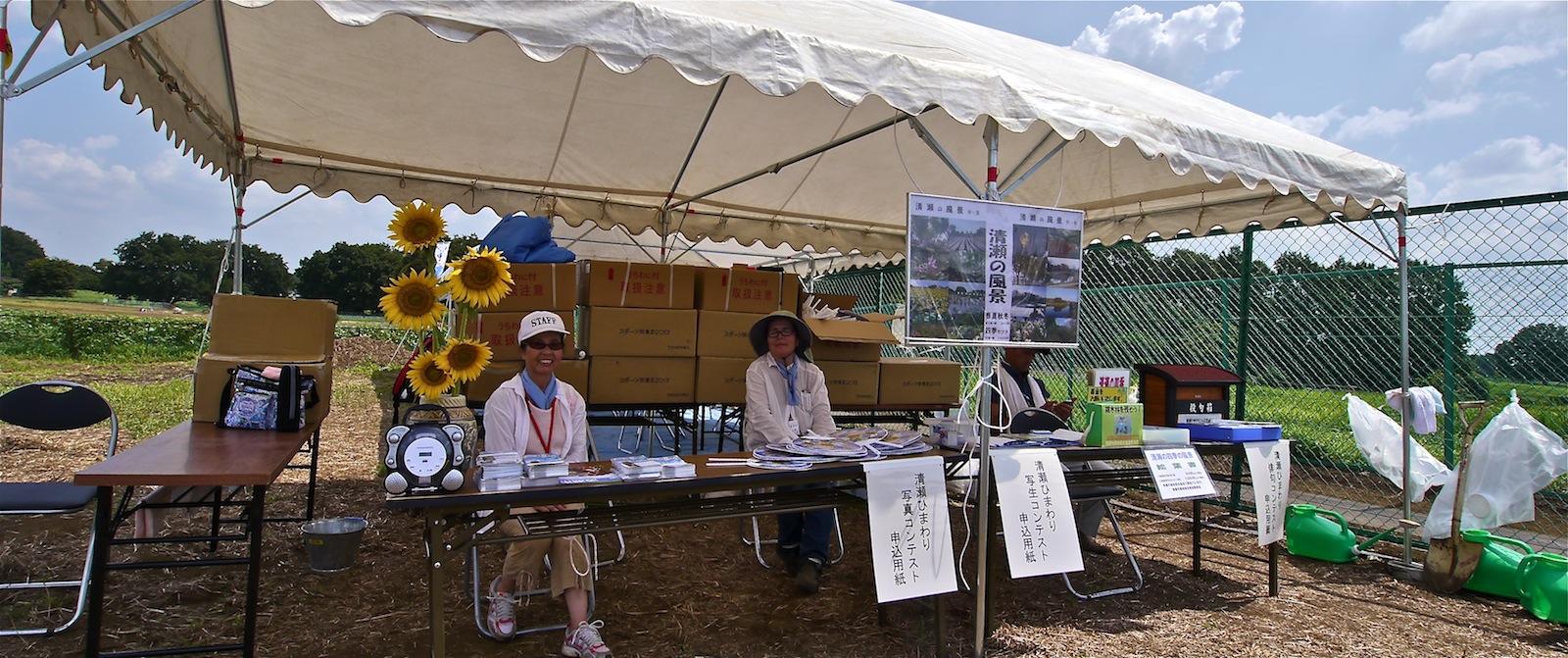 清瀬ひまわりフェスティバル2013