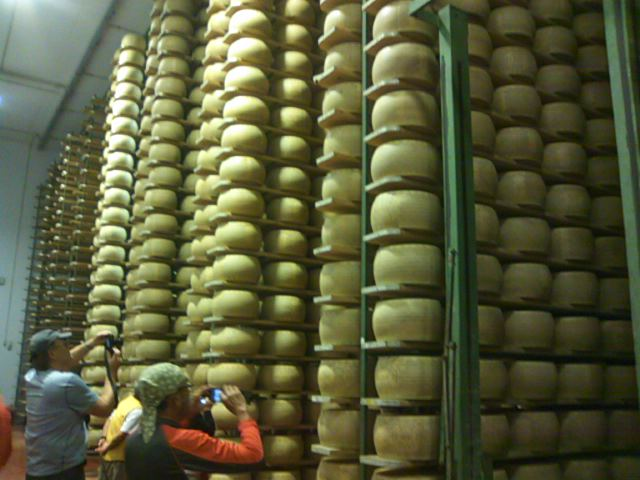 チーズ工房の熟成庫