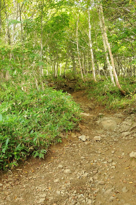 入笠山への登山口