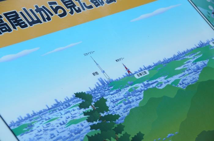 5229_20121117201102.jpg