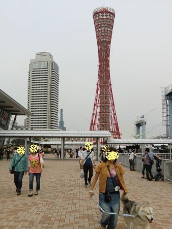 神戸接待4