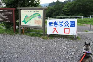 20120728 (3)